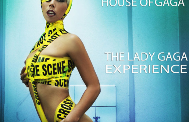 Lady Gaga Experience Poster  web