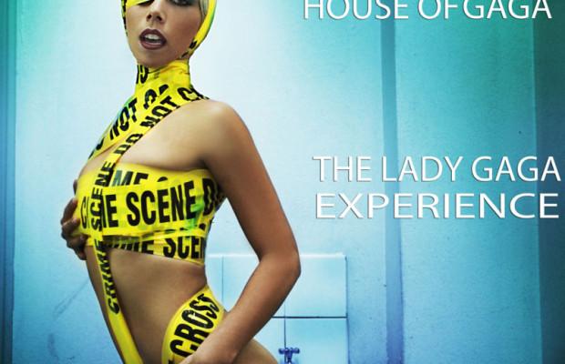 Lady Gaga Experience Poster  web