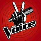 THE VOICE 2013